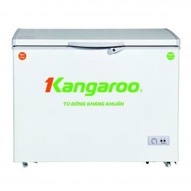 Tủ đông kháng khuẩn KG 298C1
