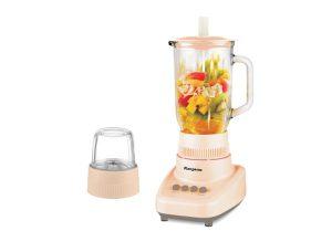 Food and Fruit Blender KG304