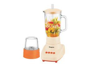 Food and Fruit Blender KG305
