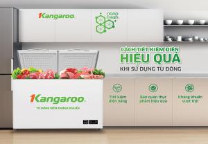 Cách sử dụng tủ đông tiết kiệm điện hiệu quả