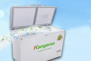 Tủ đông mềm 2 cánh Kangaroo