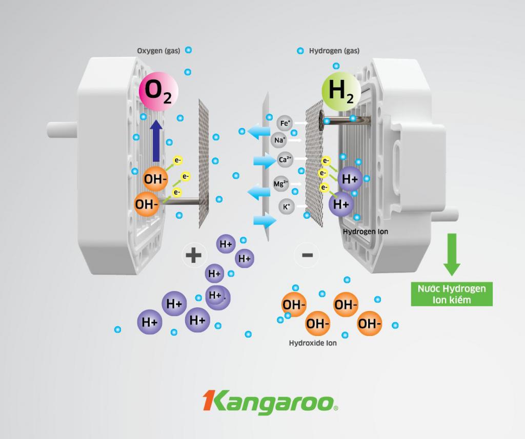 Máy lọc nước Kangaroo Hydrogen ion kiềm KG100MED