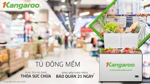 Tủ đông mềm bảo quản thực phẩm tươi ngon lên tới 21 ngày