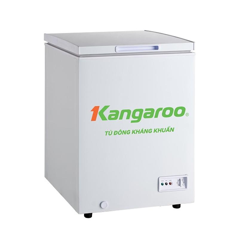 Tủ đông kháng khuẩn Kangaroo KG195C1
