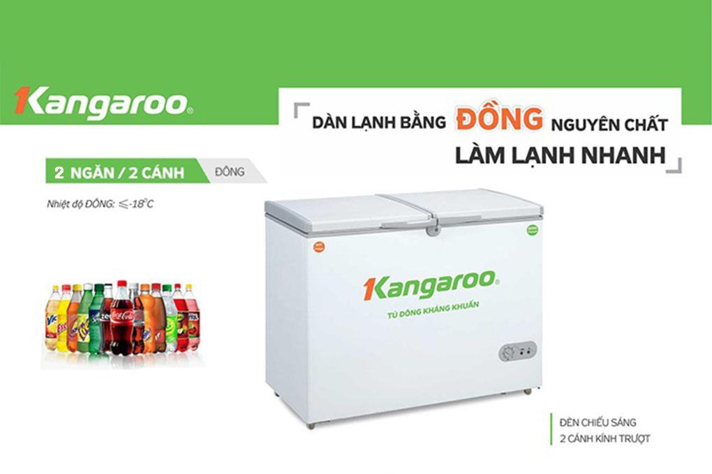 Tủ đông kháng khuẩn Kangaroo KG699C1